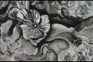 "Poppies 30""x40"" Charcoal on Paper 090000-3"